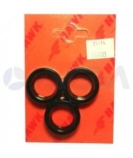Oil Seal Kit 2600.03